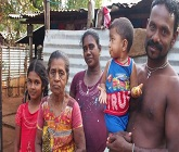Sri Lanka: Displaced in north long for home
